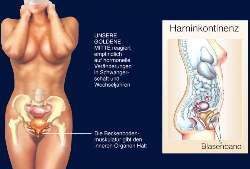 Was bring Beckenbodentraining Vibroei